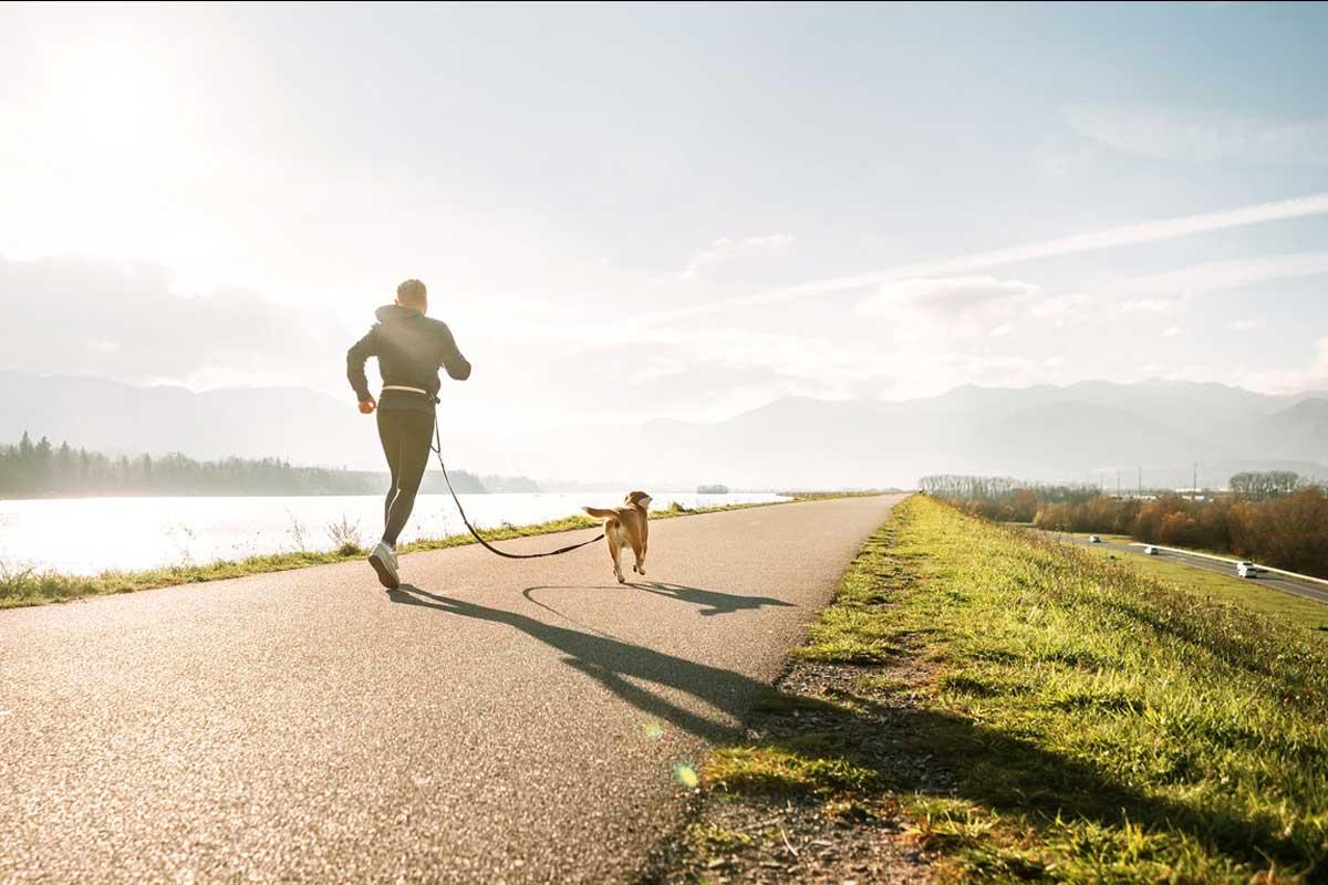 kohlpharma Blog jobgesund - gesundbewegen