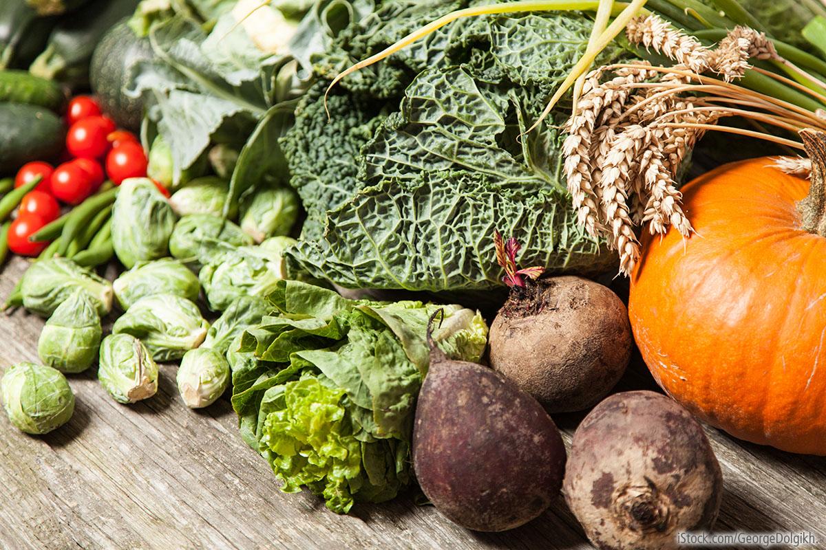 Wintergemüse - Superfood und Slow Food